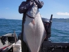 Reel Time guide Travis Wendt with an Alaska Halibut